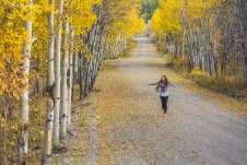 Aproveitando cada segundo das tardes de outono em Whitehorse
