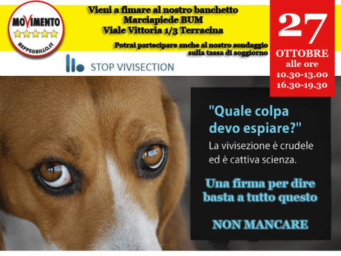 stop_vivisection