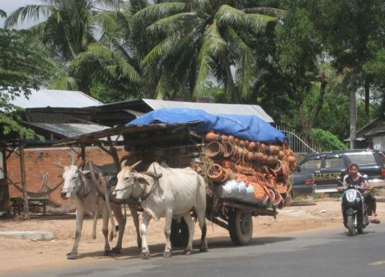 Traditional hand made pottery carried to market by oxen cart Cambodia Siem Reap
