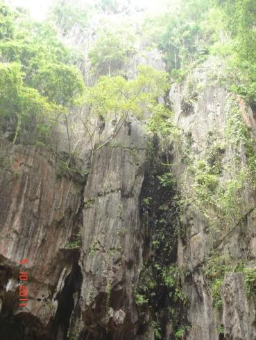 Kampot - Kampong Caves - Natures Cathedral - soaring rockwalls to sunshine
