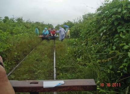 What now, another Norry? In the jungle, in the rain-adventure on a bamboo train!