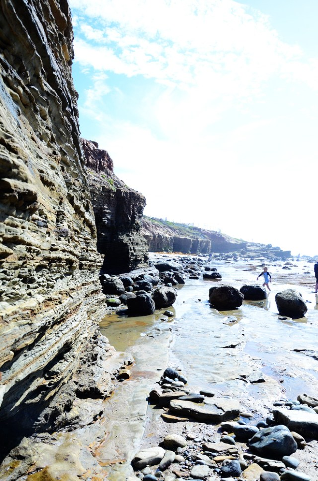 Tide Pooling at Cabrillo National Monument || terragoes.com