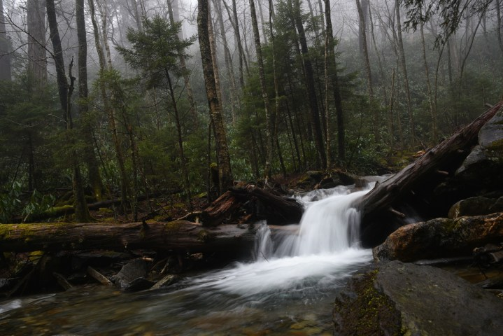 Great Smoky Mountains || terragoes.com