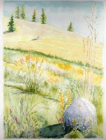02. Grasslands Rock