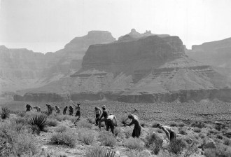 company-818-of-the-civilian-conservation-corp-building-the-the-clear-creek-trail-1934