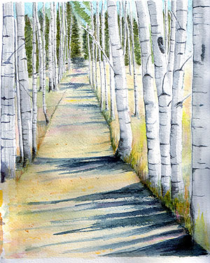 Illustration of birches and lane by Lyn Baldwin