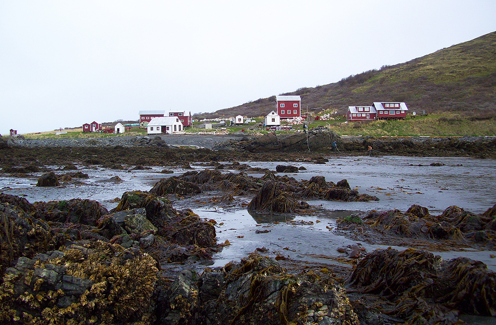 Bear Island at low tide