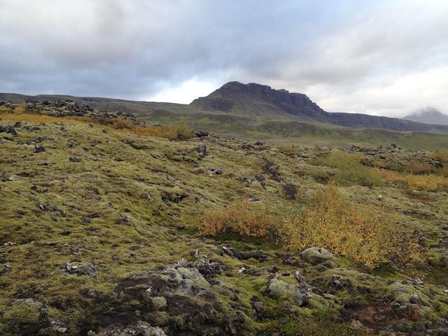 Mordor land, with moss. Grabrokargigar, Westfjords