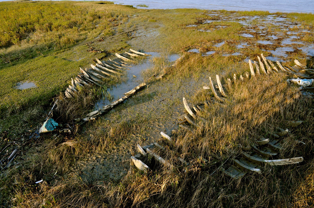 Boat skeletons