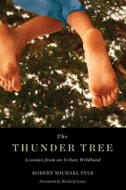 thunderTree