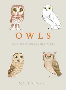 Owls: Our Most Charming Bird, by Matt Sewell