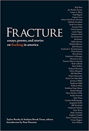 Fracture, edited by Taylor Brorby and Stefanie Brook Trout