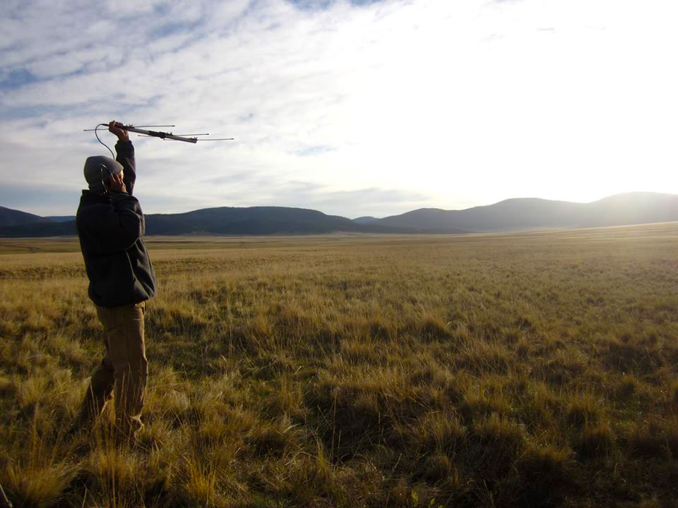 Caleb Roberts scans for elk in the Valles Caldera National Preserve, New Mexico