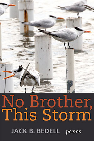 No Brother, This Storm: Poems by Jack Bedell