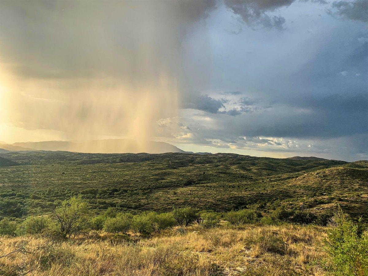 Thunderstorm in Chihuahuan Desert