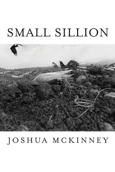 Small Sillion, by Joshua McKinney