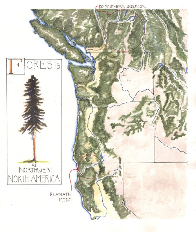 Map of the forests of northwestern North America, by Lyn Baldwin
