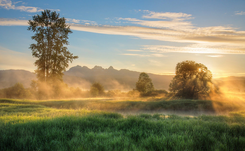 Morning sunlight and fog on river