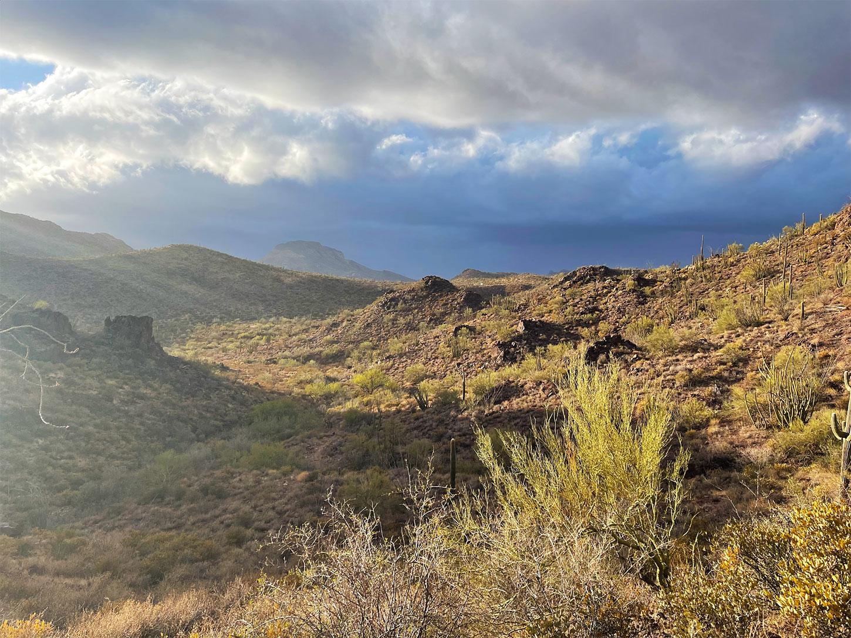 Monsoon in the Desert Southwest