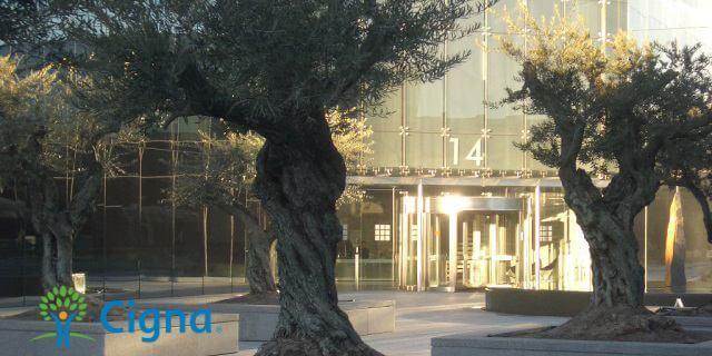 edificio de CIGNA España, en los que se presentaron sus ingresos