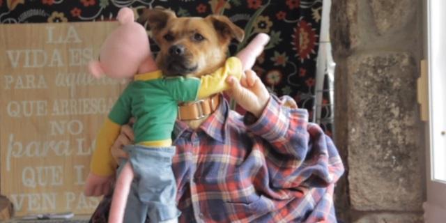 'Tu perrito', la versión canina de 'Despacito'