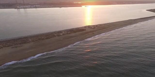 Playa que admite perros: El Espigón en la ciudad de Huelva