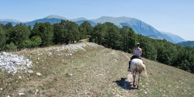 Jinete y su caballo paseando en unn camino cerca de unas colinas.