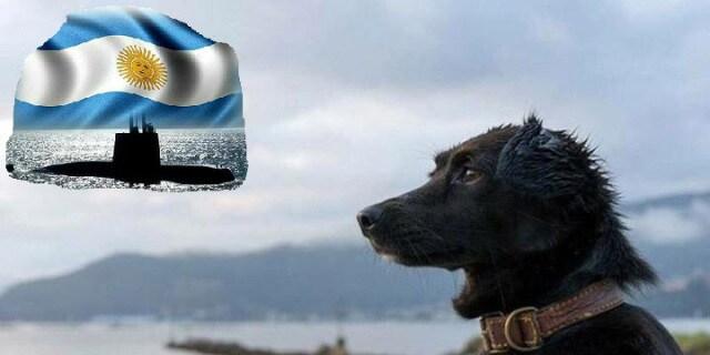 Comando, la mascota perdida