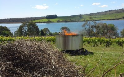 Burning Kiln from grape prunings