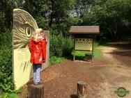 Birdseye-Parc-Chlorophylle