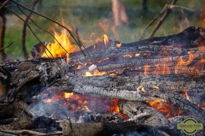 Marshmallow-Campfire