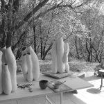 nepenthes scaled | Manon Berthellot | Manon Berthellot | Atelier | Terre et Terres | 1 décembre 2020