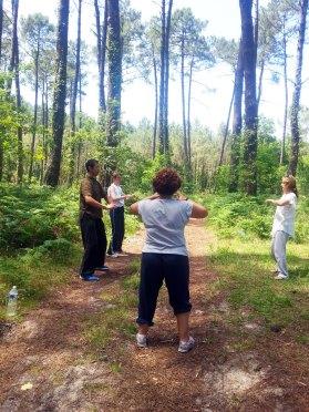 Exercice postural (Zhuan he gong) en fôret de Soustons avec les Formation II