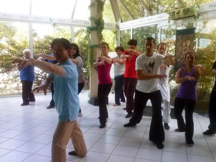 Cours de Qi Gong du Tigre à Terre d'Asie avec Maître Zhang Kunlin