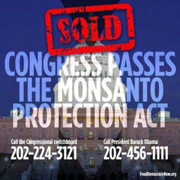 OGM - Pas de veto de Barack Obama contre le « Monsanto protection act »