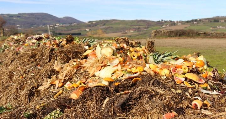 Valorisation de déchets organiques sur un andain de lombricompostage