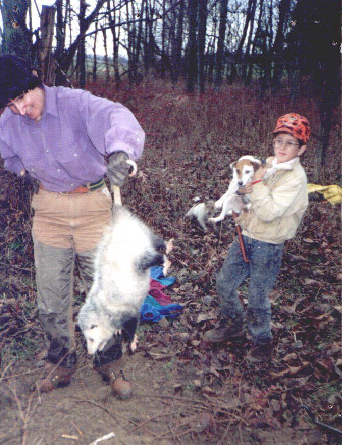 Cougar Hunting Texas
