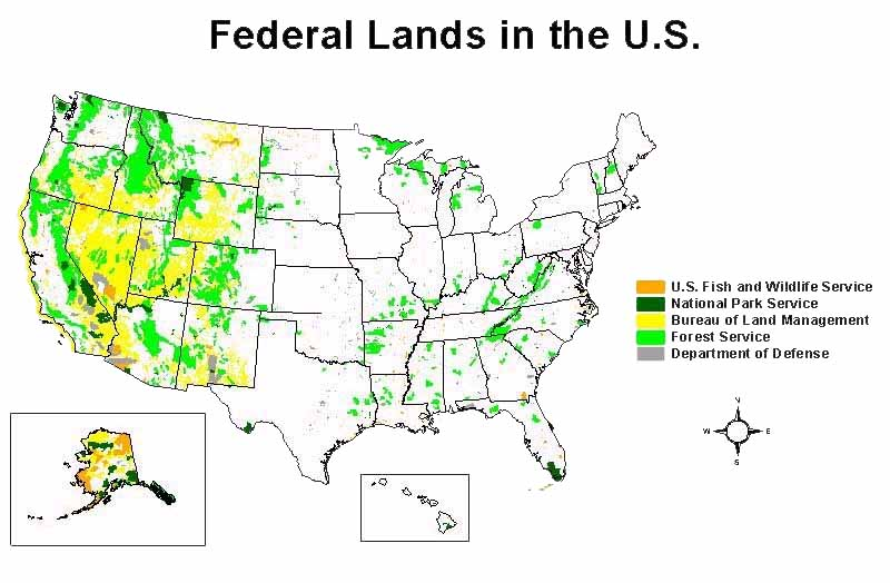 Us Coyote Population Map