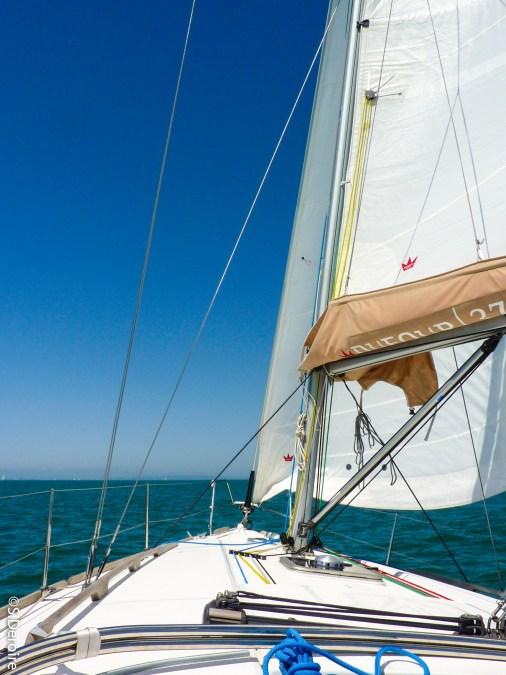 Voilier en mer Port Camargue, Terroir Evasion