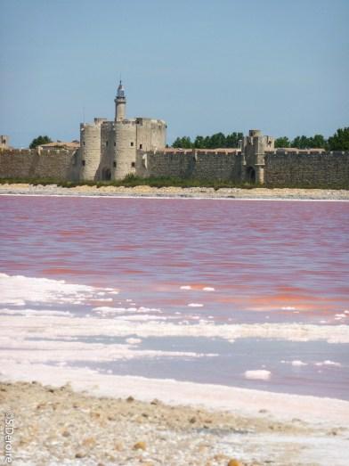 Aigues Mortes-Salins- Terroir Evasion