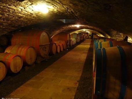 Château Chassagne-Montrachet Cave 12e s - Terroir Evasion