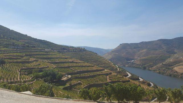 Porto - Port Wine Day - Portugal - Vallée du Douro ©TerroirEvasion.com