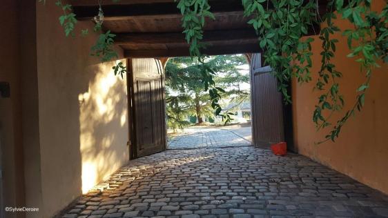 chateau-rasque-entree-portail-terroir-rvasion