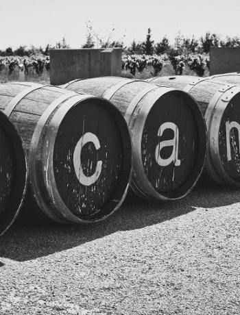 Domaine viticole Renouard - Scamandre