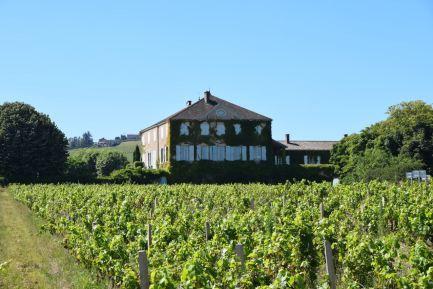 Chateau Bachelards et vignes