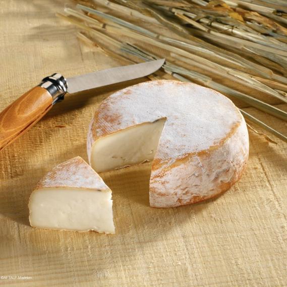 Fromages de Savoie - Chevrotin AOP Savoie