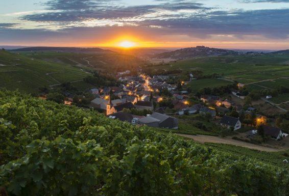 Famille Bourgeois - Vignoble Chavignol Sancerre