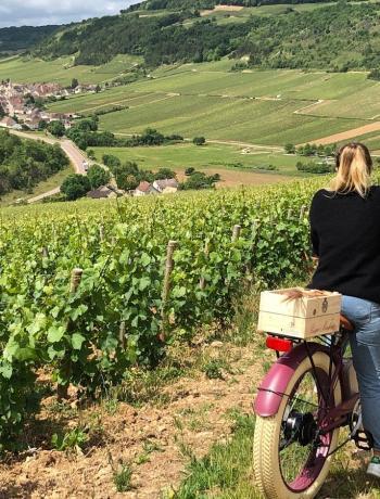 Veuve Ambal - vélo et vignes oenotourisme