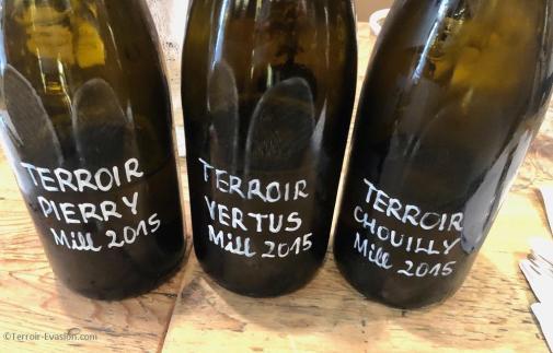 Champagne Mandois à Pierry - Trois terroirs de Chardonnay