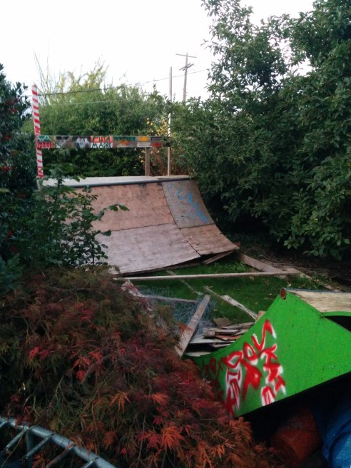 The backyard has a geodesic dome, a trampoline and this half pipe.